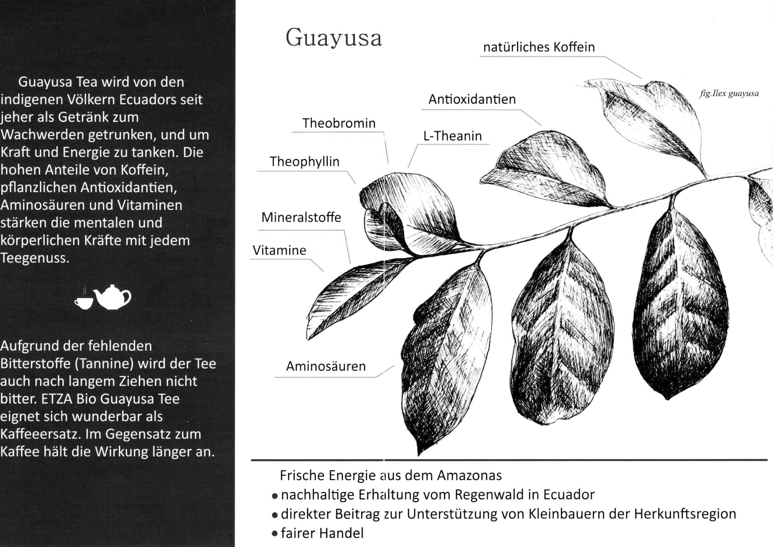 Guayusa_FlyerV-DE.jpg