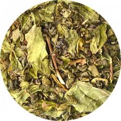 Sergeant Peppermint 100g (thé vert à la Menthe)